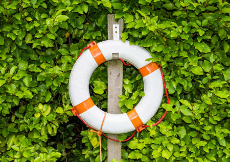 A shot of a red and white life preserver tethered to a post next to a large bush.
