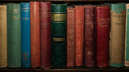 A shot of some classic literature on a wooden bookshelf.