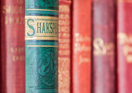 A macro shot of some antique books on a bookshelf.