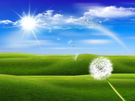 flying float: dandelion plant flying behind a beautiful green fields