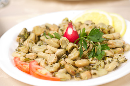 broad: Lebanese food of Cooked Broad Beans Stock Photo