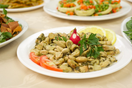 fava: Lebanese food of Cooked Broad Beans Stock Photo