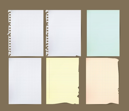 data sheet: blank papers