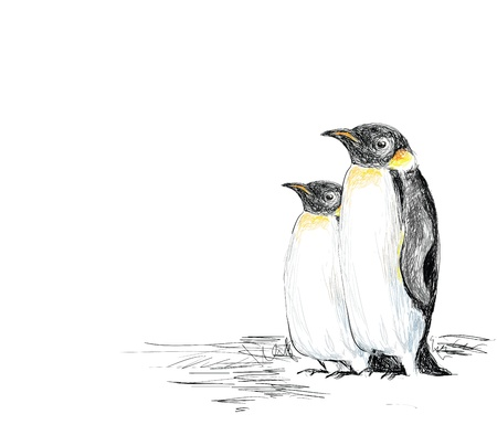 emperor: Penguins Hand Drawn