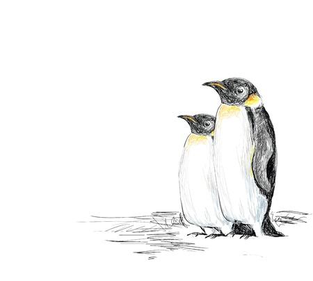Penguins Hand Drawn