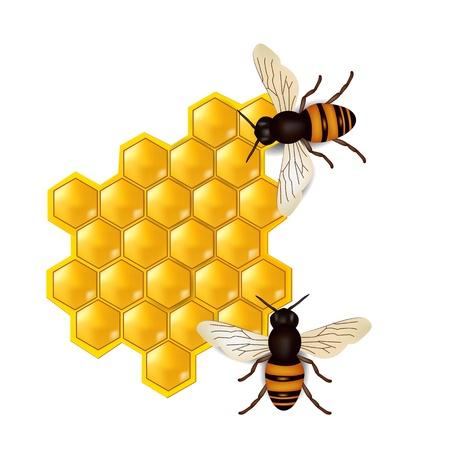 miel et abeilles: nids d'abeilles avec les abeilles Illustration