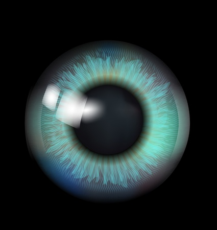 look up: Beautiful Eyeball  Illustration