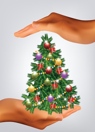 Christmas Tree Hold in Hands