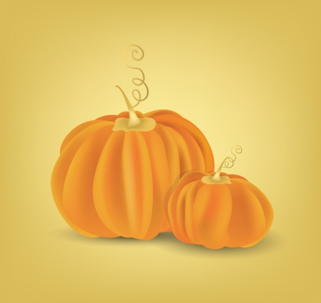 fresh vegetable:  Pumpkins Hand Dawn