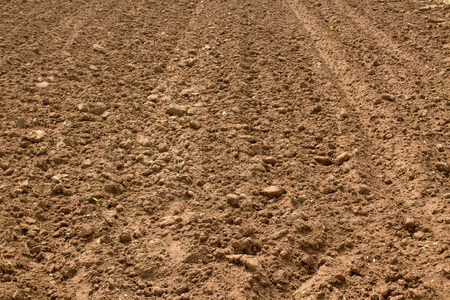 soil prepared for agriculture in northern thailand