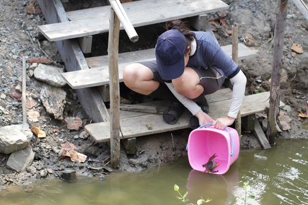 woman releasing living crab back to mangrove forest. The condition of mangrove ecosystems, meditation for captured sea animal