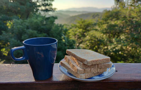 Morning breakfast 3 pieces of grilled Whole wheat bread on white plate serving with black mug of home made coffee and in the middle of forest mountain in Summer season, advertisement home stay backgr