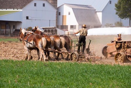 Amish Man Harvesting the Field on a autnum sunny day Banco de Imagens