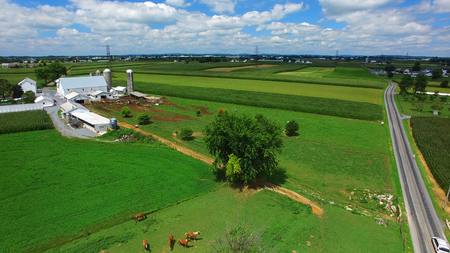 Aerial View of Amish Farm Countryside in Autumn from a Drone 版權商用圖片