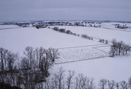 Snowy morning in Amish Farmland