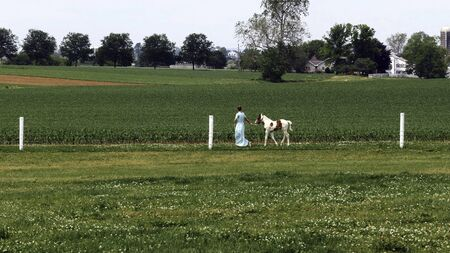 An Amish Girl Teaching a New Young Painted Horse to Run