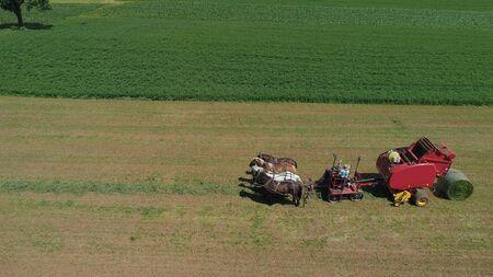 Widok z lotu ptaka farmera amiszów zbierającego swoje plony z 4 końmi i nowoczesnym sprzętem