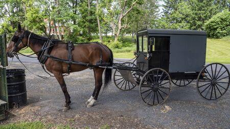 Pferd und Buggy warten auf seinen Besitzer gefesselt geparkt Standard-Bild