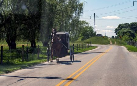 View of an Amish Horse and Buggy Going down the Road on a Sunny Day