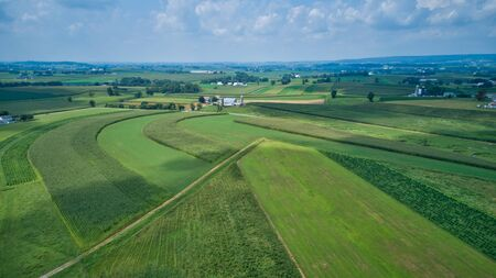 Aerial view of green farmlands and rolling crops growing on a beautiful sky on a sunny countryside