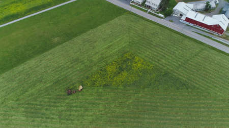 An aerial shot of an Amish farmer harvesting crop 스톡 콘텐츠