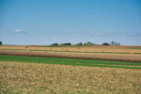 A beautiful shot of hayfield under a blue sky. 스톡 콘텐츠 - 150809219