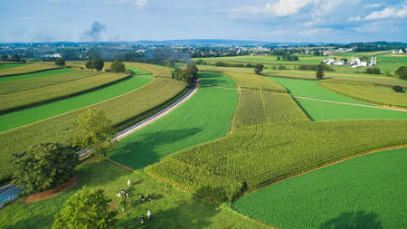 Aerial View of Beautiful Farm Lands and Countryside on a Sunny Summer Day