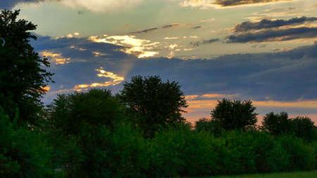 Sunset Landscape Thru Trees with Sun Rays Foto de archivo