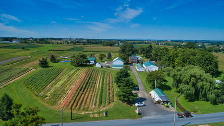 Aerial View of Multiple Farms and Pastures with Field of Corn and other Vegetables Growing on Them on a Beautiful Summer Day