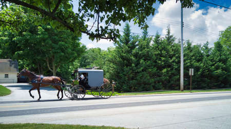 An Amish Horse and Buggy Full with Amish People Traveling along a Countryside Road on a Summer Day 스톡 콘텐츠