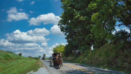 An Amish Horse and Buggy Being Followed by a Horse and Open Buggy on a Summer Day