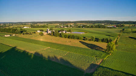 An Aerial View on An Amish Farmlands with Crops and Cows on a Sunny Afternoon 스톡 콘텐츠