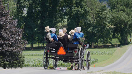 An Open Horse and Buggy With An Entire Amish Family Traveling in it on a Sunny Sunday