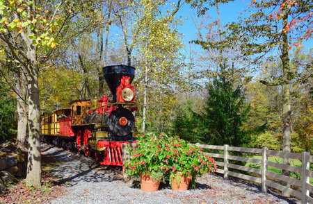 View of Antique Wood Burning Steam Engine and Coaches on a Beautiful Day