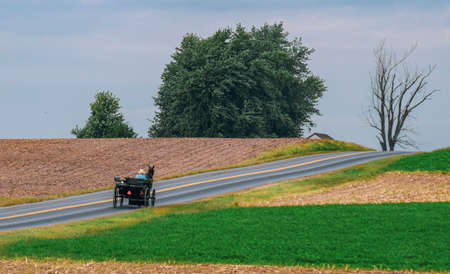 Amish Horse and Buggy Going Up a Hill on a Country Road on a Partly Cloudy Day Archivio Fotografico