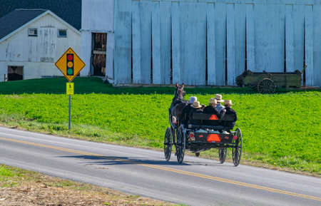 Open Amish Horse and Buggy With Family Riding in it Traveling Away From Camera on a Country Road on a Sunny Day