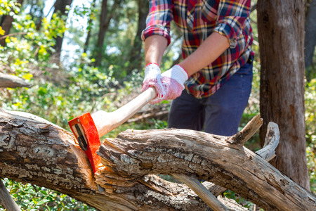 axe: Portrait of an attractive young lumberjack who chopping wood with an ax