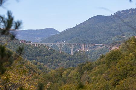 tara: Durdevica arched Tara Bridge over green Tara Canyon - Montenegro.
