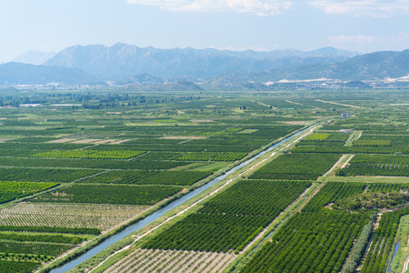 furrow: aerial view of beautiful Neretva valley in southern Croatia with numerous crop fields and hills in distance.