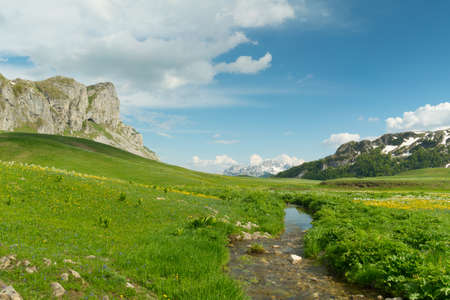 green meadow in Lukavica Plateau in the spring, Montenegro