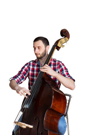 Double bass player playing contrabass Isolated image on white background. Portrait