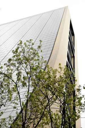foiliage: View of skyscraper from street level with a tree in the foreground, Manhattan, New York City. Stock Photo