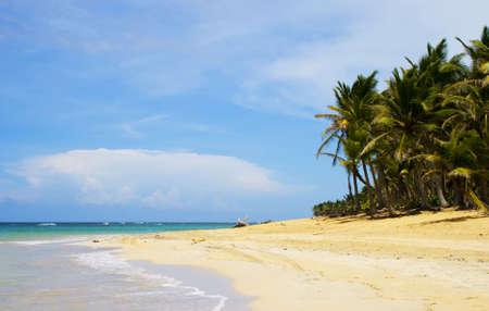 View of  a carribean beach.