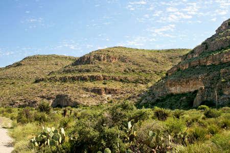 Arid landscape in the American southwest.