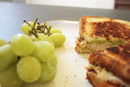 A delicious panini with a side of fresh grapes.
