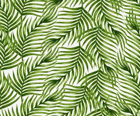 Vector pattern: Watercolor cọ nhiệt đới lá mô hình liền mạch. Minh hoạ vector. Hình minh hoạ