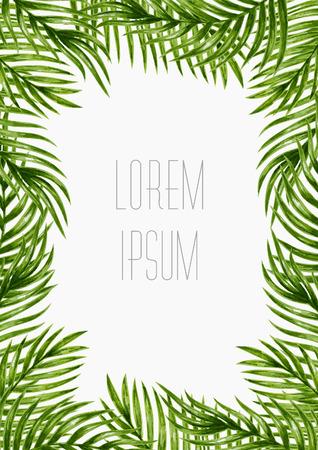 feuille arbre: Palm leaves. Tropical carte de voeux.