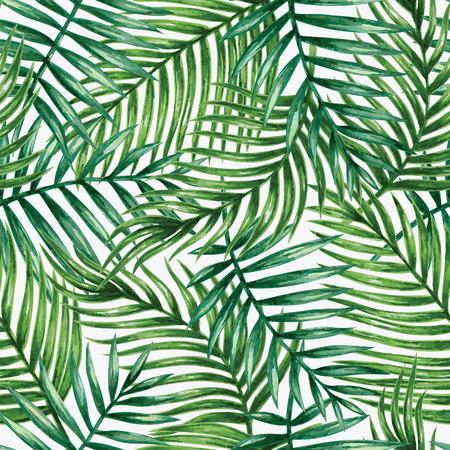 impresión: Acuarela palmera tropical deja patrón transparente