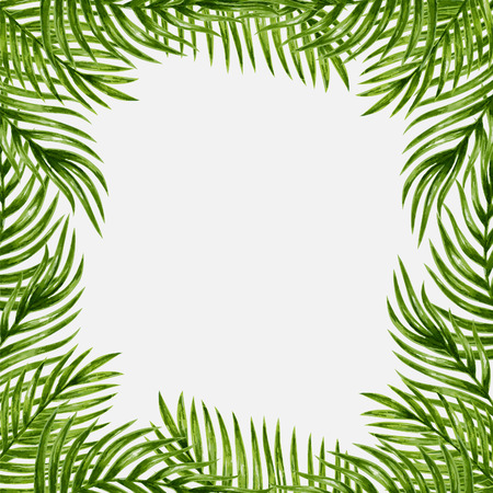 frame vector: Palm leaves background. Tropical greeting card.