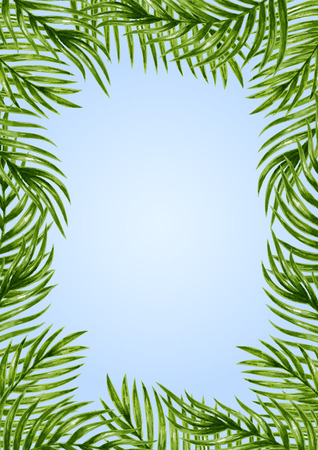 Palm leaves background. Tropical greeting card.